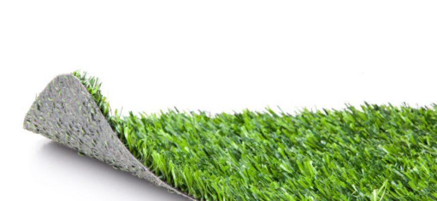 האם דשא סינטטי מתאים לבית עם כלבים וחתולים?